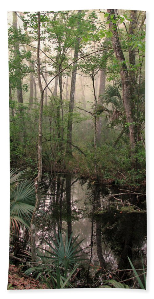 Nature Bath Sheet featuring the photograph Morning Comes Softly by Peg Urban