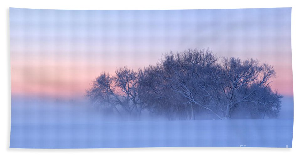 Fog Hand Towel featuring the photograph Morning Fog by Ronda Kimbrow