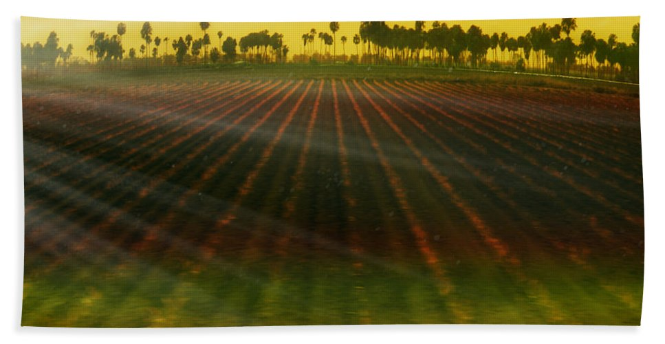 Landscape Bath Sheet featuring the photograph Morning Has Broken by Holly Kempe