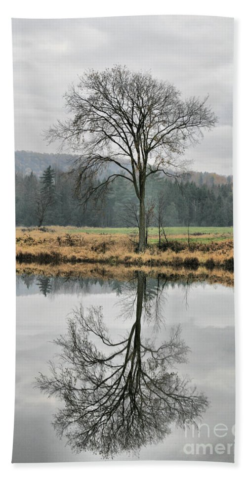 Reflections Bath Towel featuring the photograph Morning Haze And Reflections by Deborah Benoit