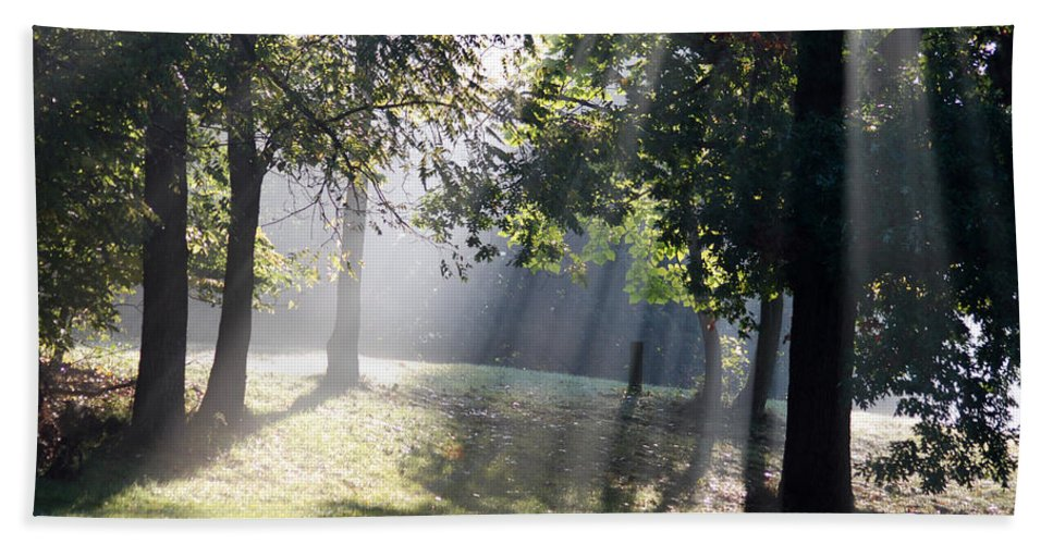 Landscape Hand Towel featuring the photograph Morning Light by Michael Peychich