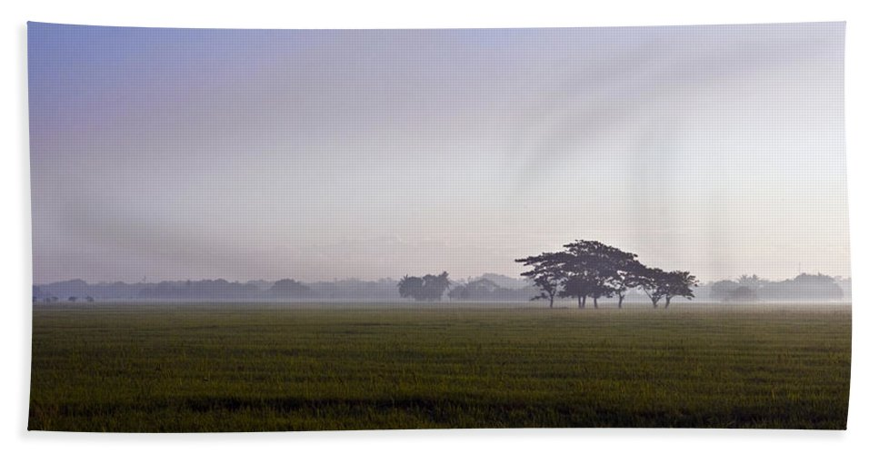 Nature Bath Sheet featuring the photograph Morning Mist by George Cabig