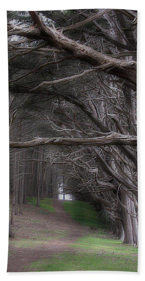 Landscape Bath Towel featuring the photograph Moss Beach Trees 4191 by Karen W Meyer
