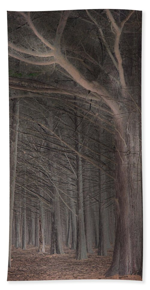 Landscapes Bath Towel featuring the photograph Moss Beach Trees by Karen W Meyer