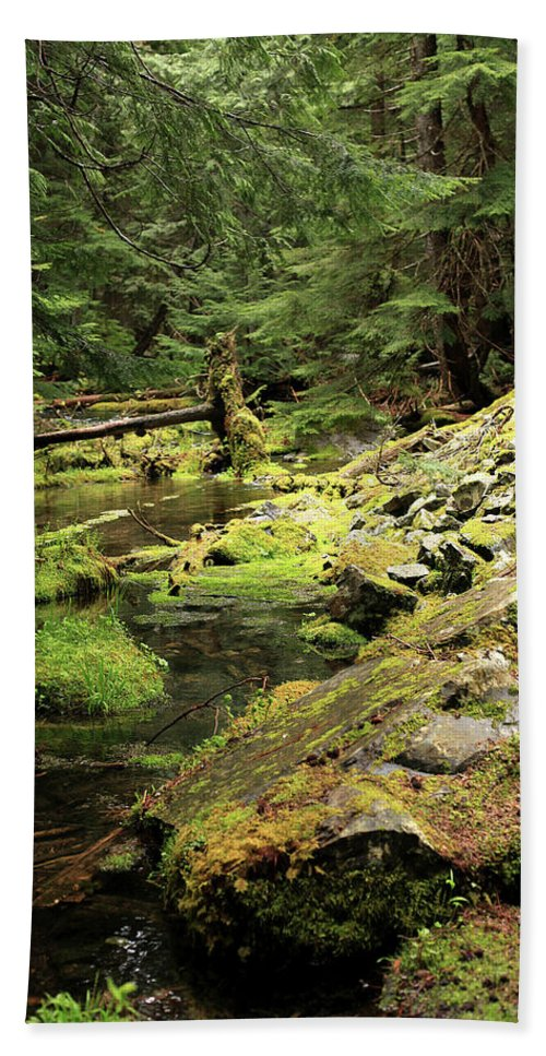 Cedar Hand Towel featuring the photograph Moss By The Stream by Tracy Chappell