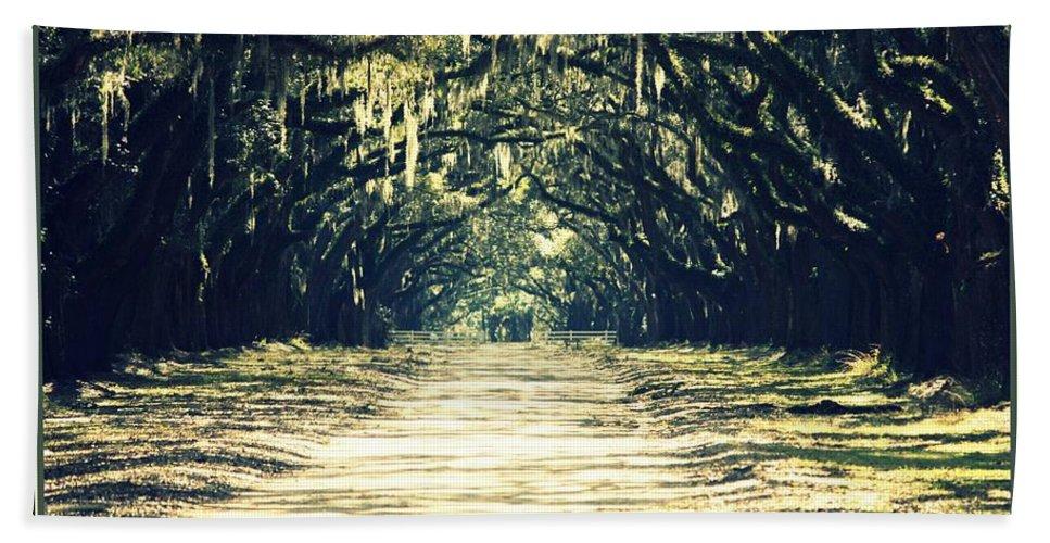 Savannah Bath Sheet featuring the photograph Moss Green Road by Carol Groenen