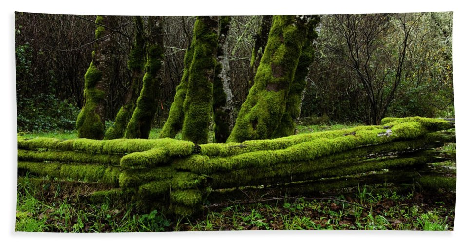 Moss Bath Sheet featuring the photograph Mossy Fence 3 by Bob Christopher
