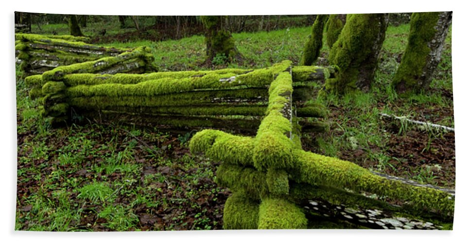 Moss Bath Sheet featuring the photograph Mossy Fence 4 by Bob Christopher