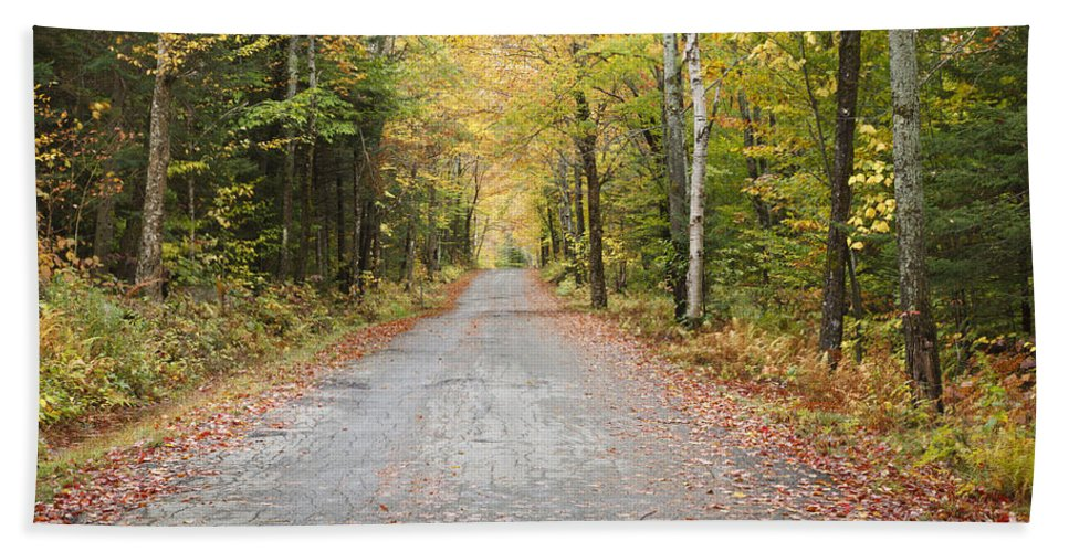 Autumn Bath Towel featuring the photograph Mount Clinton Road - Beans Grant New Hampshire by Erin Paul Donovan