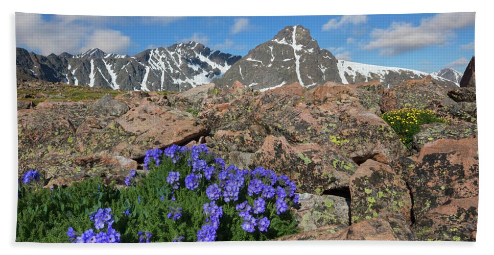Mount Holy Cross Bath Sheet featuring the photograph Mount Holy Cross With Wildflowers 2 by Rob Greebon