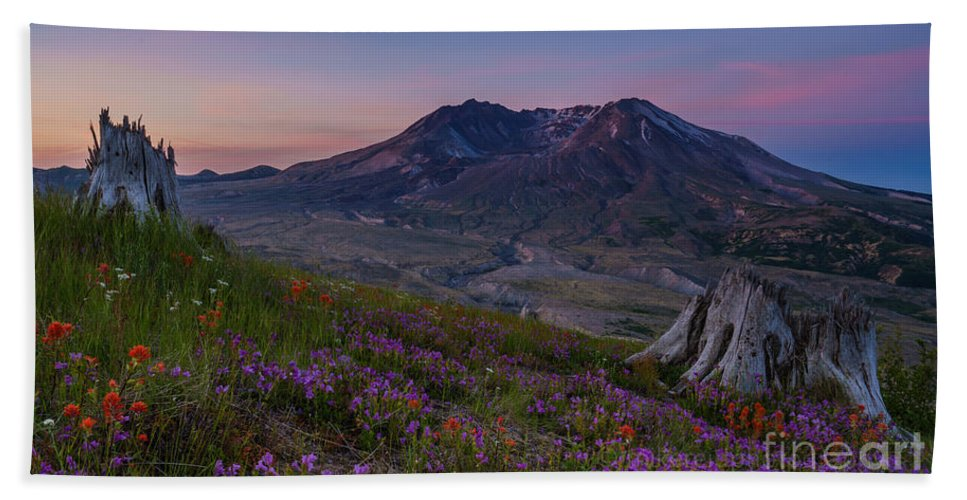 Spring Bath Sheet featuring the photograph Mount St Helens Renewal by Mike Reid