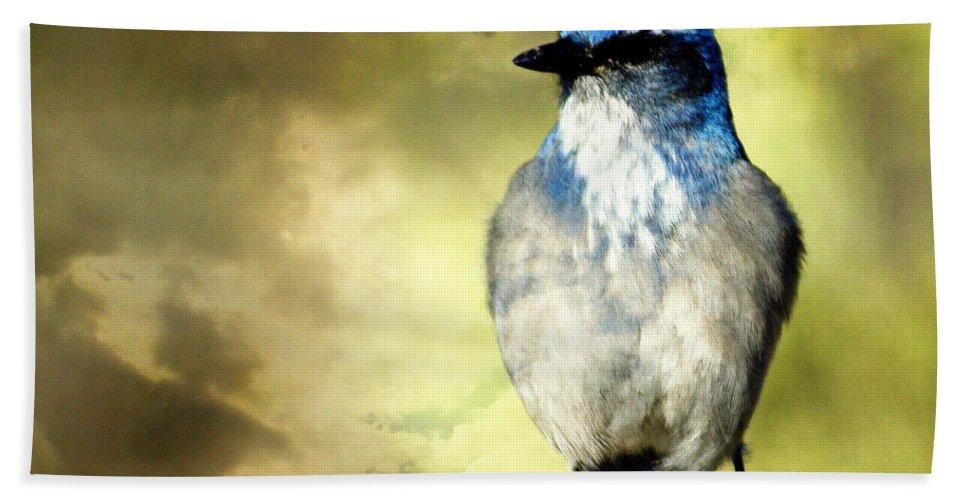 Bird Hand Towel featuring the photograph Mountain Bluebird by Marty Koch
