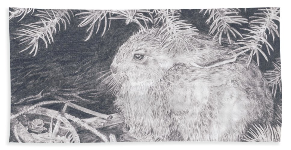 Rabbit Bath Sheet featuring the drawing Mountain Cottontail by Shevin Childers