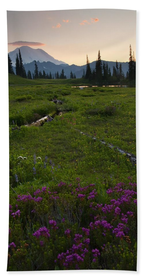 Rainier Hand Towel featuring the photograph Mountain Heather Sunset by Mike Dawson