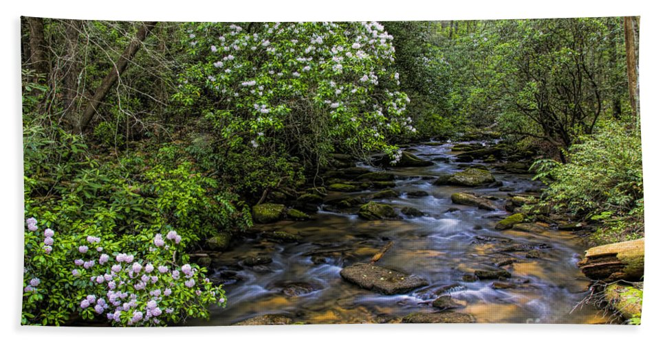 Mountain Laurels Bath Sheet featuring the photograph Mountain Laurels Light Up Panther Creek by Barbara Bowen