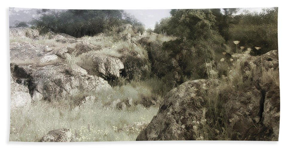 Landscape Bath Towel featuring the photograph Mountain Lion Country by Karen W Meyer