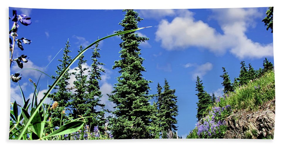 Trail Hand Towel featuring the photograph Mountain Trail - Olympic National Park by John Trommer