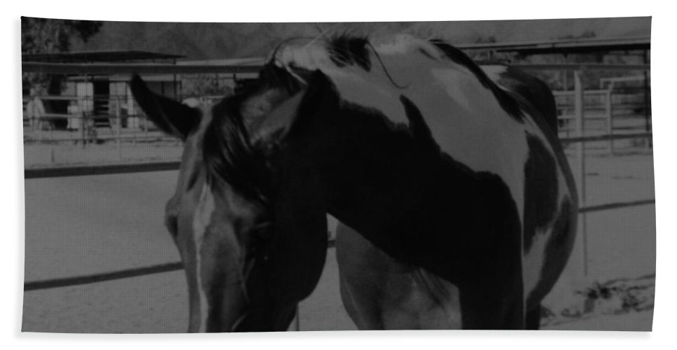 Black And White Hand Towel featuring the photograph Mr Ed In Black And White by Rob Hans