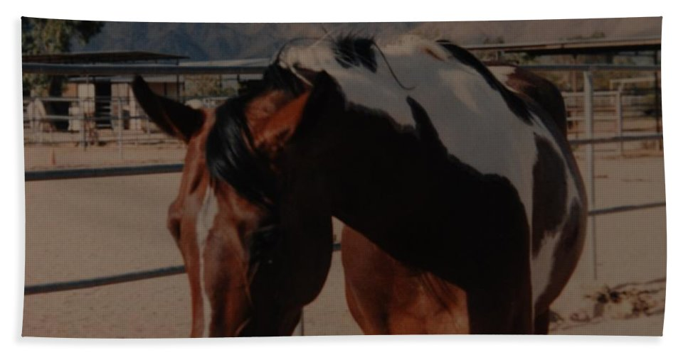 Horse Hand Towel featuring the photograph Mr Ed by Rob Hans
