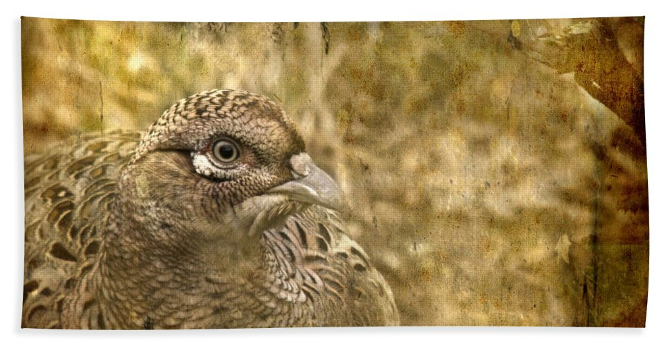 Pheasant Bath Sheet featuring the photograph Mrs Pheasant by Angel Ciesniarska