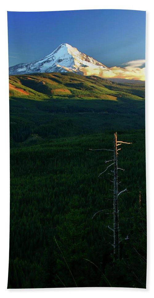 Mt Hood Bath Sheet featuring the photograph Mt Hood With Snag by Albert Seger