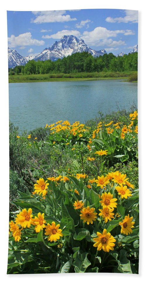 Mt. Moran Hand Towel featuring the photograph Dm9225-mt. Moran And Arrowleaf Balsamroot by Ed Cooper Photography