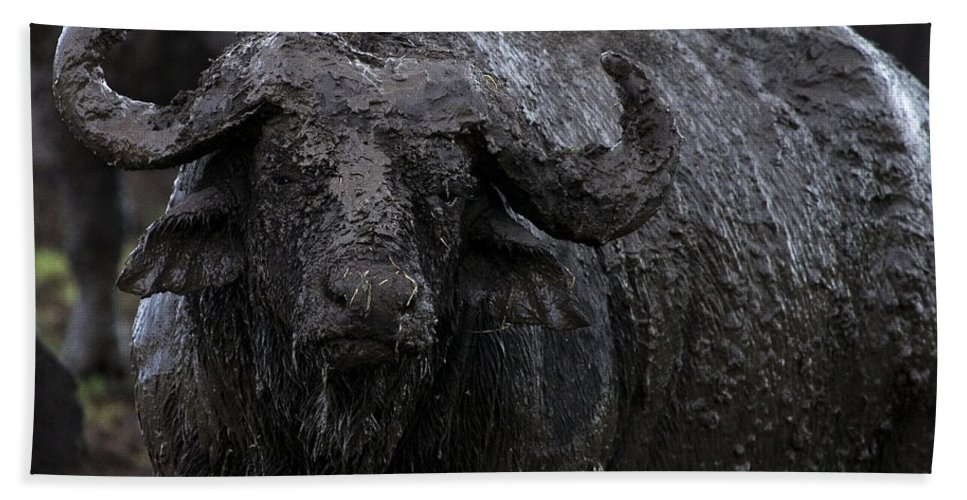 Syncerus Caffer Bath Sheet featuring the photograph Mud Sculpture-signed by J L Woody Wooden