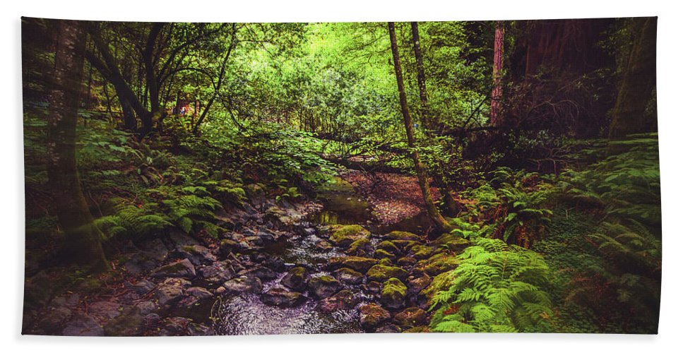 Woods Hand Towel featuring the photograph Muir Woods No. 3 by Laura DAddona