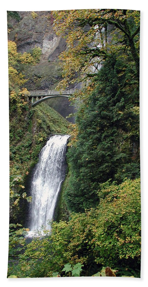 Multnomah Hand Towel featuring the photograph Multnomah Falls 3 by D'Arcy Evans