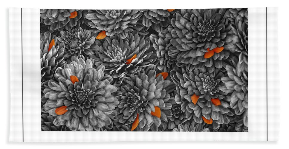 Chrysanthemum Bath Sheet featuring the photograph Mum Petals Bw Poster by Mike Nellums