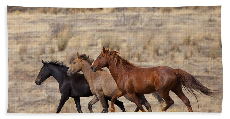 Horses Hand Towel featuring the photograph Mustang Trio by Mike Dawson