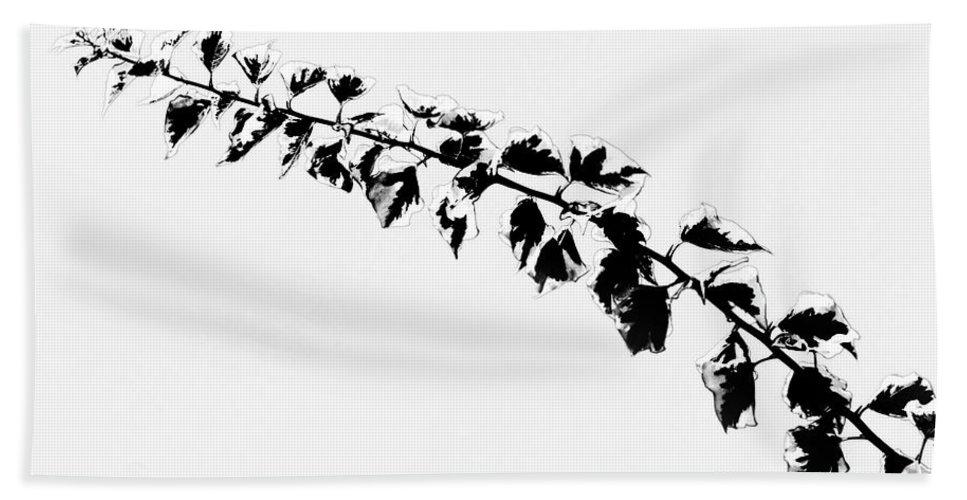 Vine Hand Towel featuring the photograph My Bougainvillea Aurea 5 by Gary Bartoloni