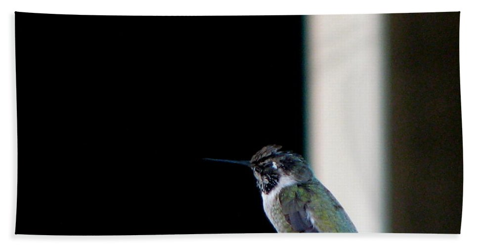 Patzer Bath Towel featuring the photograph My Friend Stop By by Greg Patzer