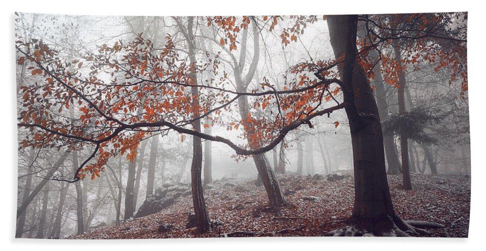 Jenny Rainbow Fine Art Photography Bath Sheet featuring the photograph Mysterious Woods by Jenny Rainbow