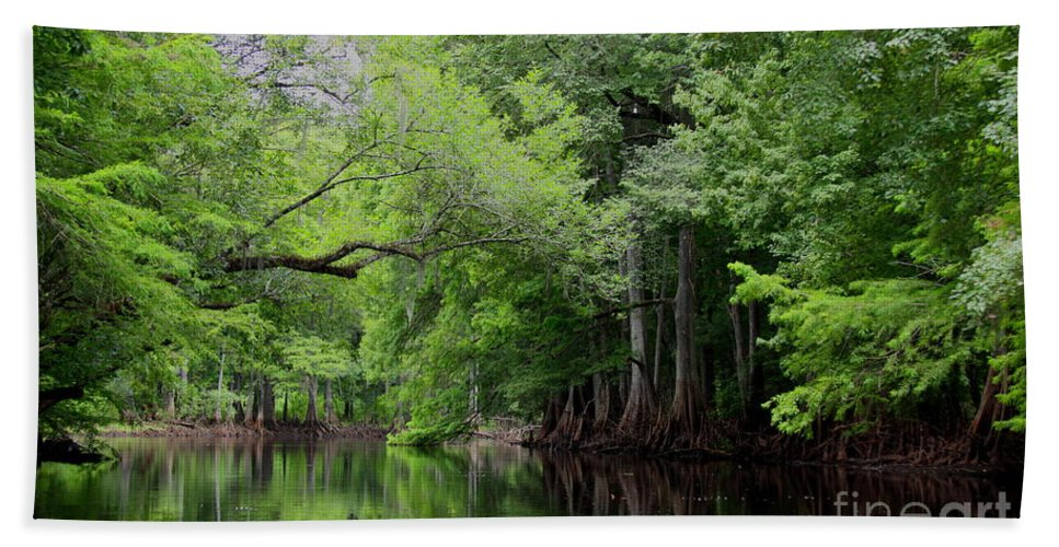 Withlacoochee River Bath Sheet featuring the photograph Mystical Withlacoochee River by Barbara Bowen