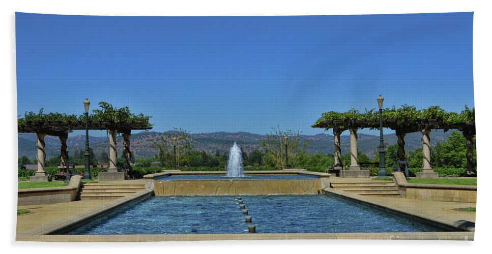 Inglenook Vineyard Hand Towel featuring the photograph Napa Valley Inglenook Vineyard -4 by Tommy Anderson