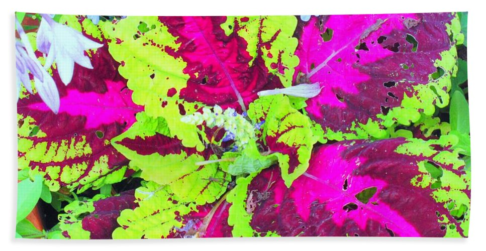 Flower Bath Towel featuring the photograph Natural Abstraction by Ian MacDonald