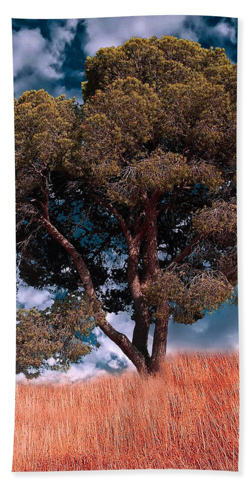 Photograph Hand Towel featuring the photograph Nature - Green Tree by Munir Alawi