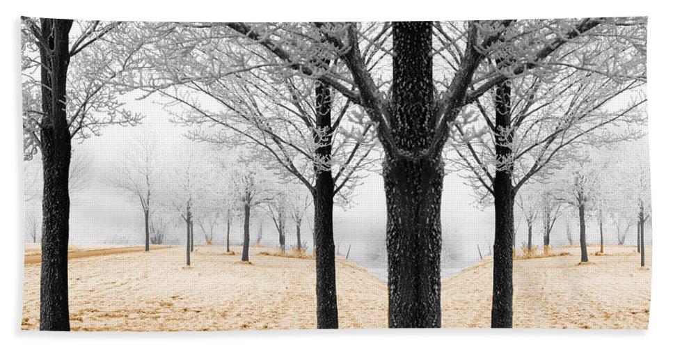 Season Hand Towel featuring the photograph Nature - Mixed Season by Munir Alawi