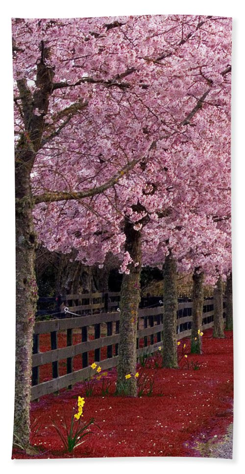 Pink Hand Towel featuring the photograph Nature - Pink Trees by Munir Alawi
