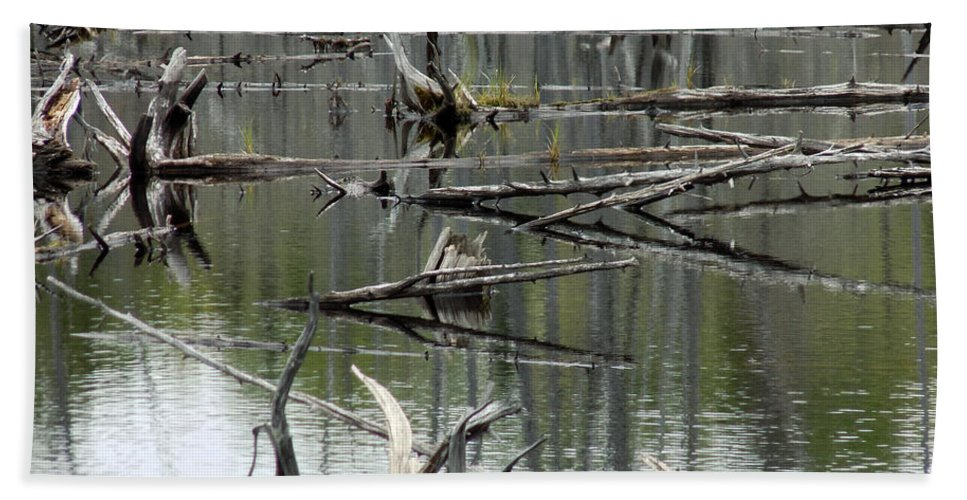 Wetland Hand Towel featuring the photograph Nature Bird Sculpture by William Tasker