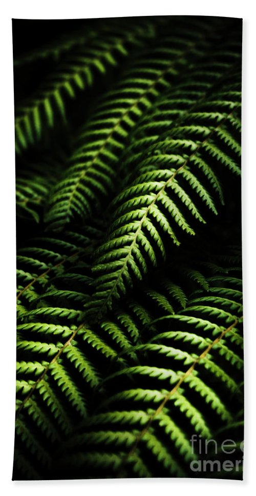 Tropical Bath Towel featuring the photograph Nature In Minimalism by Jorgo Photography - Wall Art Gallery