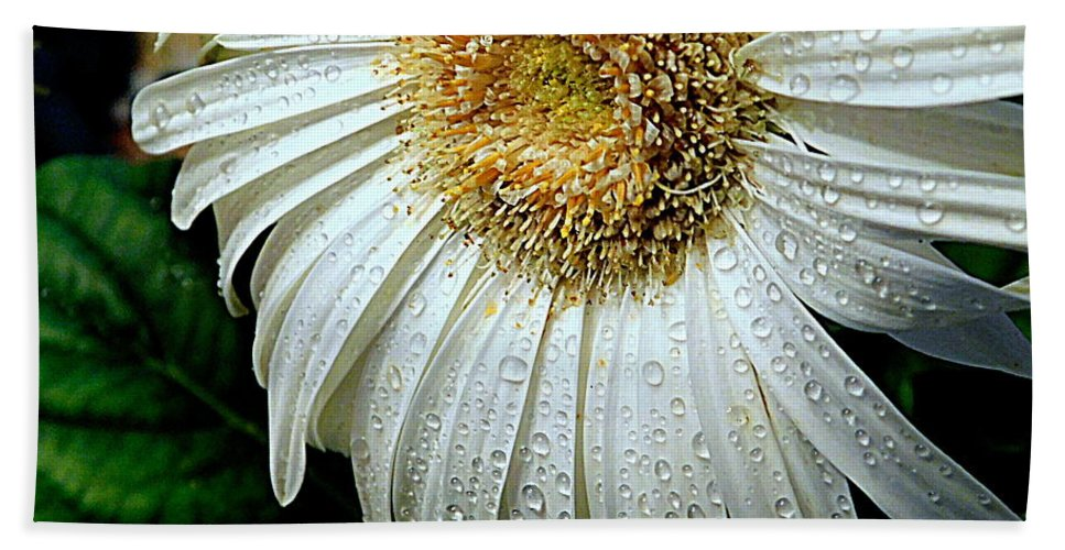 Flower Bath Sheet featuring the photograph Nature When Wet by Arlane Crump