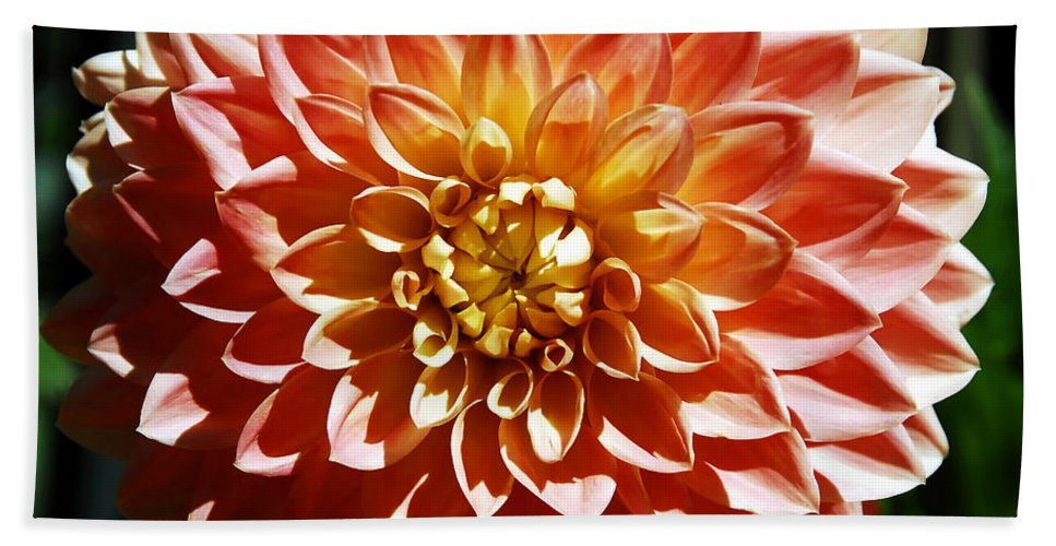 Flower Hand Towel featuring the photograph Nature's Brilliance by David Lee Thompson