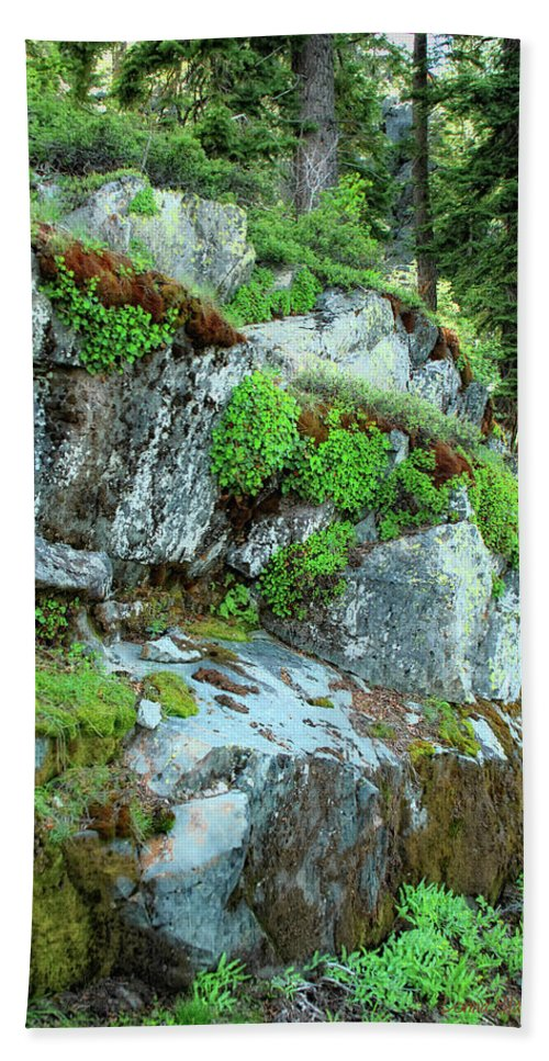 Nature Hand Towel featuring the photograph Nature's Collage by Donna Blackhall