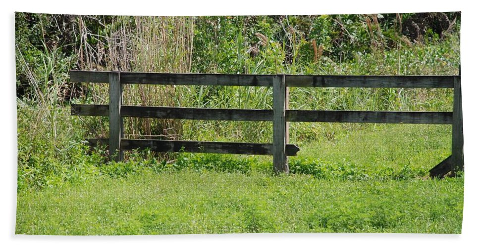 Fence Bath Sheet featuring the photograph Natures Fence by Rob Hans