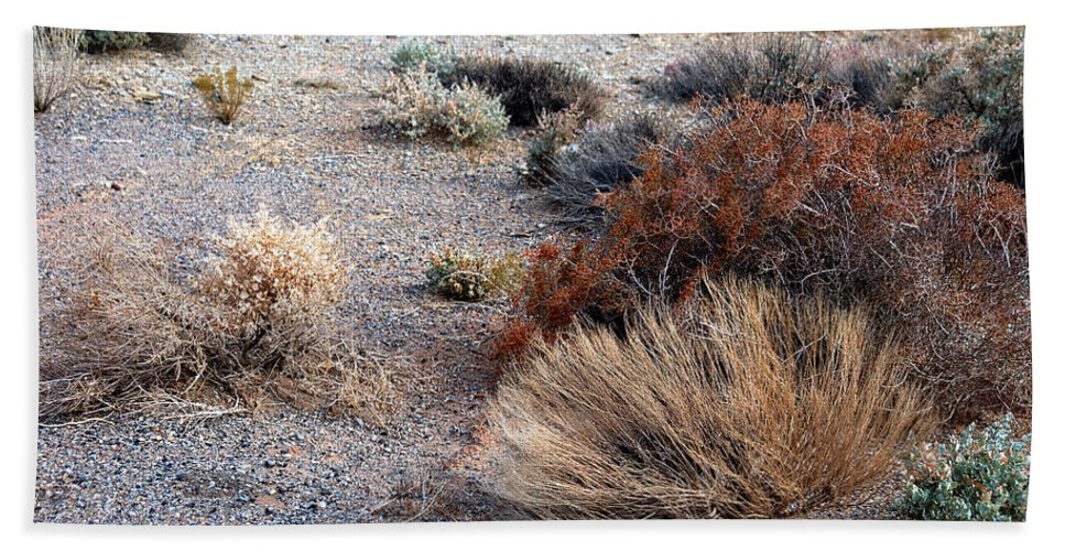 Sage Brush Hand Towel featuring the photograph Natures Garden - Utah by D'Arcy Evans