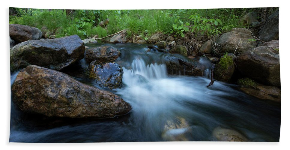 Beauty Bath Sheet featuring the photograph Nature's Harmony by Sue Cullumber