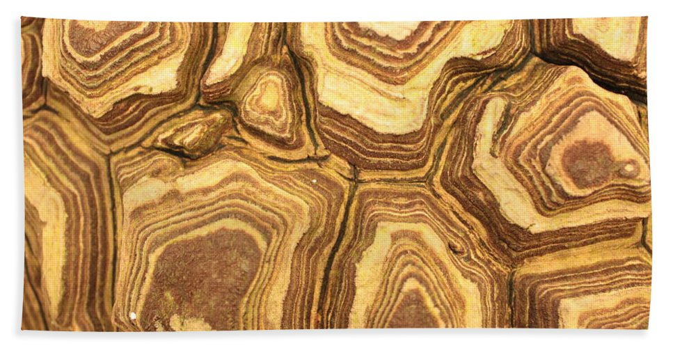 Nature Bath Sheet featuring the photograph Nature's Interesting Patterns by Carol Groenen