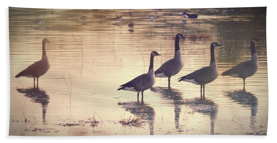 Nature's Music Hand Towel featuring the photograph Nature's Music by Lisa S Baker